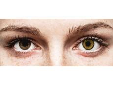 Dark Hazel контактные линзы - SofLens Natural Colors - С диоптриями (2 месячные цветные линзы)