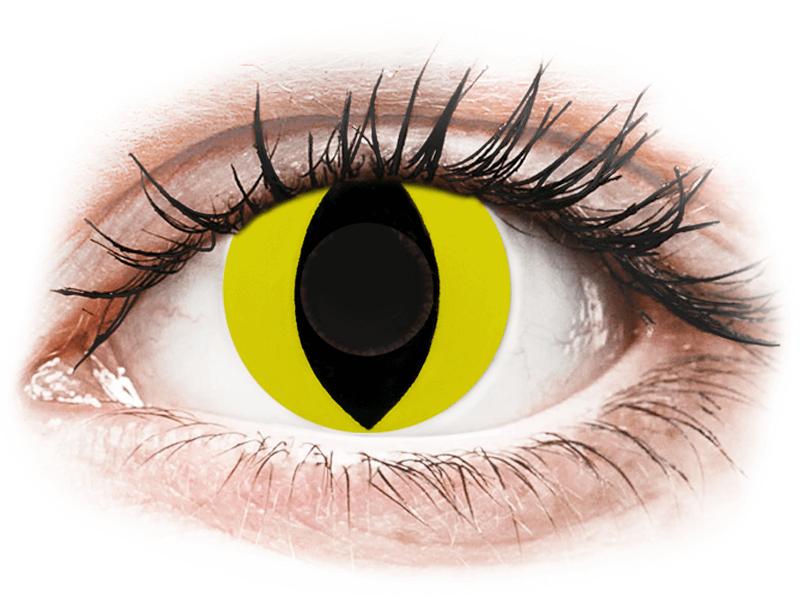 CRAZY LENS - Cat Eye Yellow - без диоптрий (2 однодневных цветных линз)